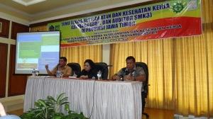 Temu Auditor SMK3