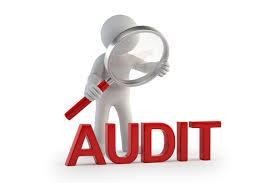 Auditor Internal Mahasiswa